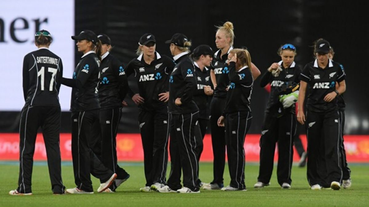 New Zealand Cricket Has Cancelled Women's Tour, Men's Tours In Doubts